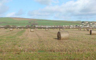 Braunton Great Field